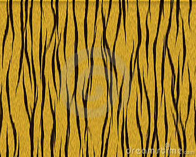 Tiger shaggy short fur