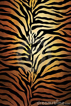 tiger skin royalty free stock photos image 17214958