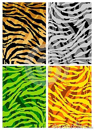 Tiger skins texture