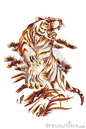 Tiger Tattoo Macro Isolated