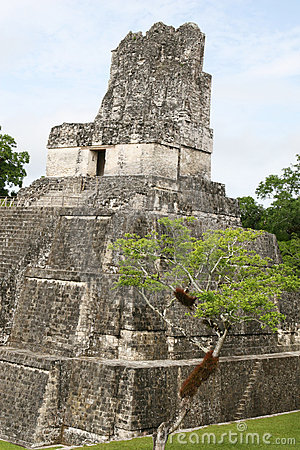 Free Tikal Temple II Royalty Free Stock Images - 3364739