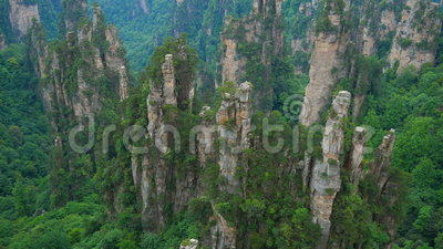 Tilt up view of of Zhangjiajie National forest park, Wulingyuan, China. Tilt up view of of Zhangjiajie National forest park, Wulingyuan, Hunan, China stock footage