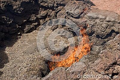 Timanfaya grass turning into fire