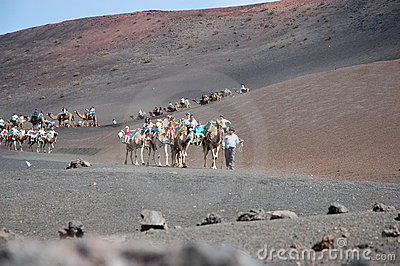 Timanfaya National Park Editorial Image