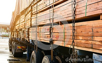 Timber transport truck Park waiting for inspection Stock Photo