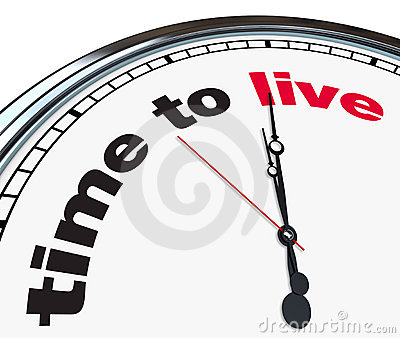 Time to Live - Ornate Clock