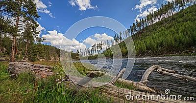 Timelapse Рекы Йеллоустоун, национального парка Йеллоустон, Соединенных Штатов сток-видео