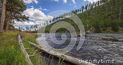 Timelapse van Yellowstone-Rivier, het Nationale Park van Yellowstone, Verenigde Staten stock footage