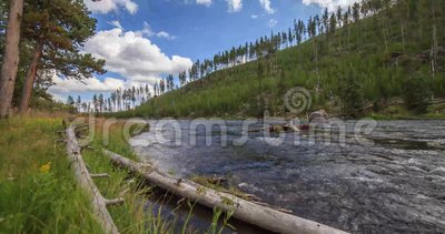 Timelapse of Yellowstone River,Yellowstone National Park, United States. Summer Timelapse of Yellowstone River with clouds on blue sky shooted from motorized stock footage