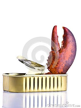 Tinned lobster