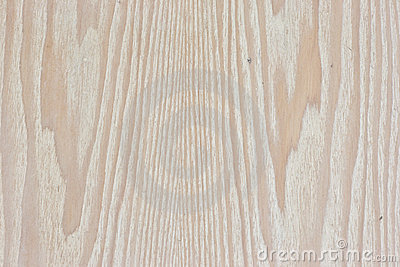 The Tint Wood Background