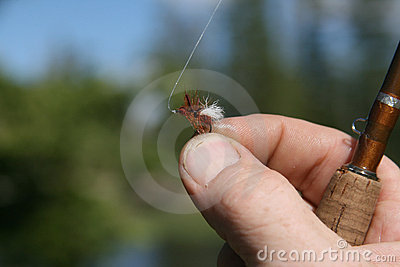 Tiny fishing fly