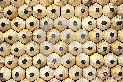 Tips of many little wooden pencils close up