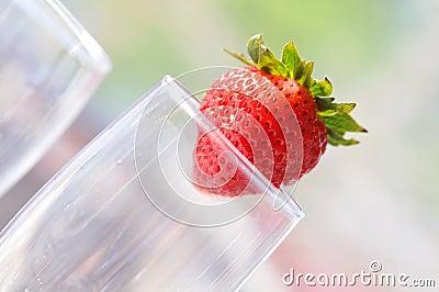 Tipsy Strawberry