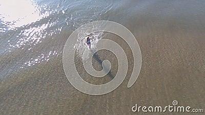 Tir du haut du bourdon, où la blonde dans un bikini blanc court le long de l'eau sur le bord de la mer pendant le début de la mat banque de vidéos