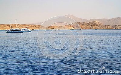 Tiran island coast