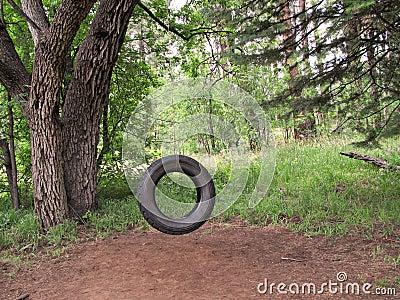 Tire Swing Nostalgia