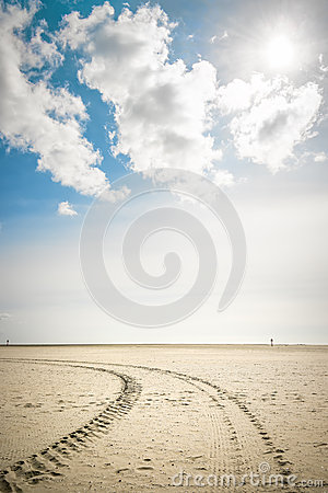 Tire tracks in sand with backlight
