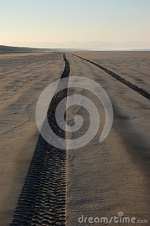 Tire tracks on sandy beach