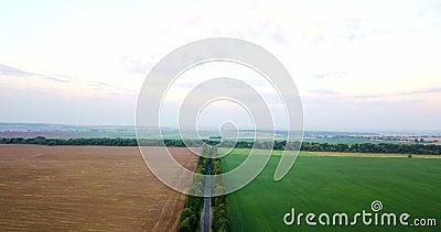 Tiro aéreo de campos con los diversos tipos de agricultura farming Tiro aéreo de las tierras de labrantío Tiro aéreo de agrícola almacen de metraje de vídeo