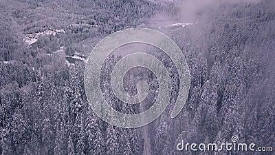 Tiro aéreo de estabelecimento e de revelação de uma estrada coberto de neve e das árvores que abram às montanhas video estoque
