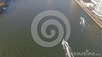 Tiro de seguimento aéreo de revelação dos watertaxi de rotterdam e da ponte famosa do Erasmus vídeos de arquivo