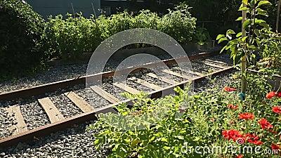 Tiro del carro del jardín de la comunidad de la pista ferroviaria almacen de video