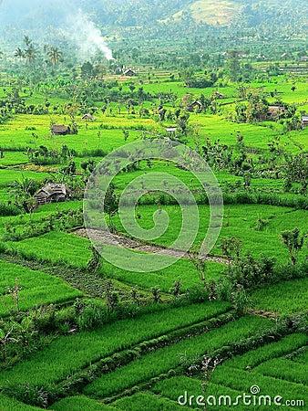 Tirtaganga landscape