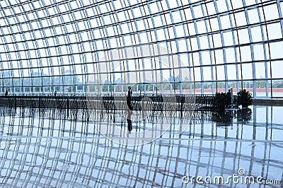 Titanium structure  in the  National Grand Theatre Editorial Stock Image