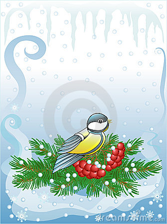 Titmouse & fur-tree with berries (vector)