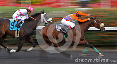 Tiz Dynamic Wins a Claiming Race Editorial Stock Photo