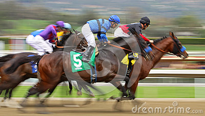 Tiz The Truth Wins His First Race Editorial Stock Image