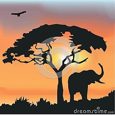 Tło afrykańska przyroda