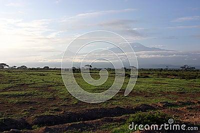 To Kilimanjaro