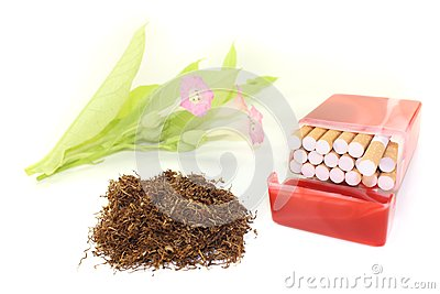 Tobacco with cigarettes case and blossoms