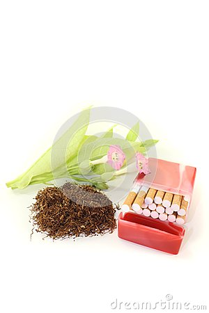 Tobacco with cigarettes case, leafs and blossoms