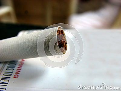 Tobacco Cigarrette