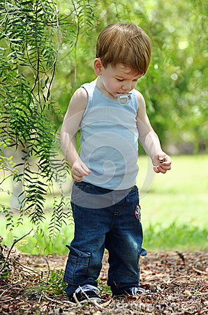 Free Toddler Baby Boy Discovering Treasures In Forest Stock Images - 41277664