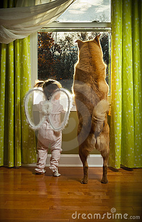 Toddler And Dog Looking Out The Window Royalty Free Stock