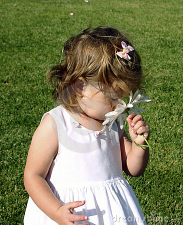 Free Toddler Girl Smelling Flower Royalty Free Stock Photography - 2135827