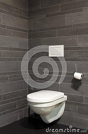 Free Toilet Royalty Free Stock Photo - 17443575