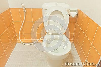 Toilet Bathroom clean.