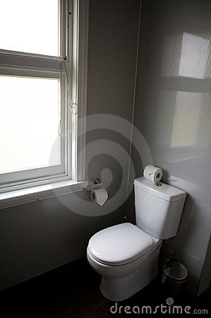 Toilet in a hotel room, home related