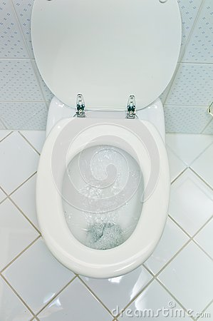 Toilet in a household