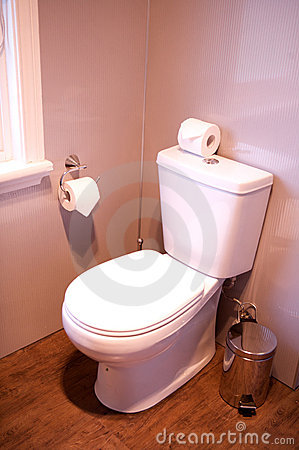 Free Toilet In A Hotel Room, Home Related, Holder Roll Royalty Free Stock Image - 11833356