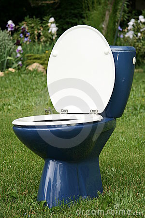 Free Toilet In Green Herb Royalty Free Stock Photography - 9744617