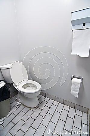 Toilet in Office Washroom