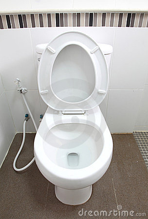 Toilet seat in bathroom
