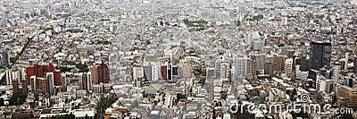 Tokyo: cityscape