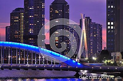 Tokyo at night - Eitai bashi bridge